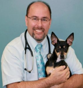 Our Veterinary Team | Brickell Bay Animal Hospital